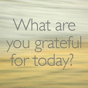 what-are-you-grateful-for-today